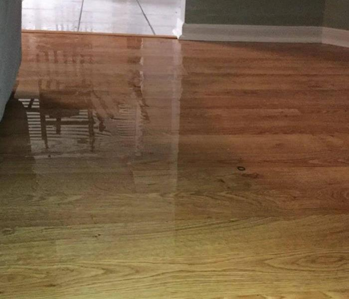 Standing water on the living room floor.